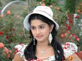 Jayashree Heroor