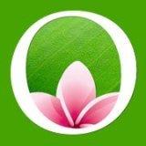 lotusasiacasino