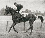Fair Play (horse)