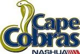 cape cobras