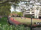 Pace University High School