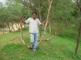 Raj Veer