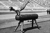 Gymnastics at the 1896 Summer Olympics – Men's vault