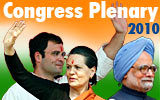 Congress Introspection 2010