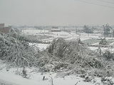 2008 Chinese winter storms