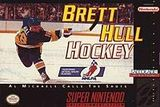 Brett Hull Hockey
