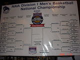 2008 NAIA Men's Division I Basketball Tournament