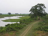 Climate of Kaziranga National Park