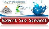 seo services expert seo in seo - Expert Seo Services