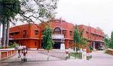 Meerut College