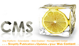 cms website development - CMS Website Development