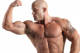 Best Lean Muscle Mass