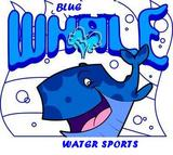 blue whale water sports