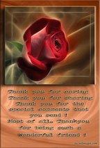 aarse rose