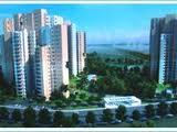 Gurgaon Hills Ireo By Anil Gupta