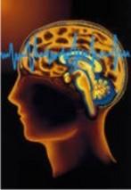 Neurology Associates P.C.