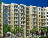 Rajiv Reality homes