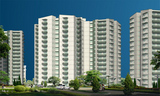 Stellar Group Jeevan Greater Noida Uniconproperty.com