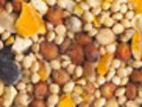 indian sesame exporters - Indian Sesame Exporters in India