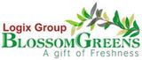 Blossom Greens Sector 143 Noida