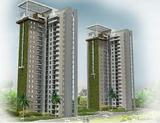 Palm Olympia Residential Project in Noida Extension