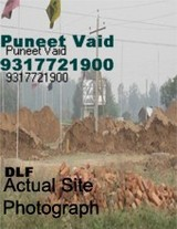 DLF HYDE PARK TERRACES MULLANPUR FUTURE ESTATES