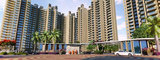 SS Group The Coralwood Gurgaon