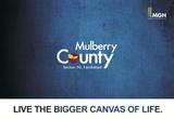 MULBERRY COUNTY IN FRESH BOOKING