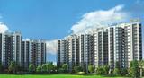 Apartments On Dwarka Expressway