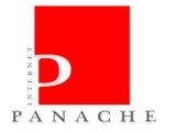 INTERNET PANACHE