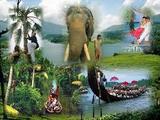 kerala - Kerala Tour