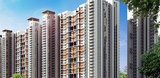 Jaypee Orchards as a better place to live in Noida