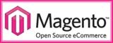 Magento Ecommerce Development In India