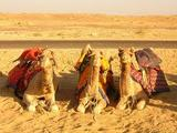 Visit the land of old Heritage with Rajasthan Heritage