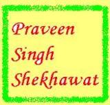 Praveen Singh Shekhawat