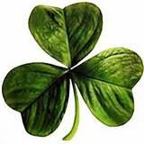St Patrick's Day 2014