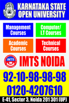 mba distance institute in noida