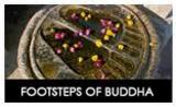Footsteps of Buddha Tour with viajes inida