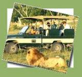 exotic beaches with indian wildlife trips - Exotic Beaches with Indian Wildlife Trips