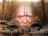 swami samarth elect