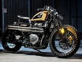 Internation Triumph Motorcycles