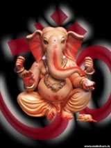 SHREE GANESH ENTERPRISES