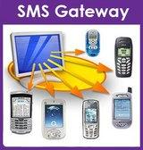 bulk sms gateway - Offer Good Customer Service SMS Gateway
