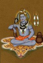 Mahadev Madhav Nidhi Charitable Trust