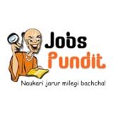 Jobs Pundit