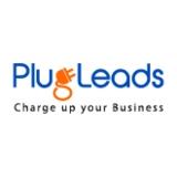 b2b business - Plugleads
