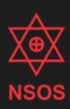 NSOS Consulting LLP