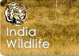 India Wildlife Tours Feel Adventure in India