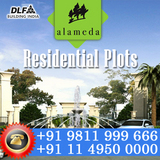 DLF Alameda Plots Gurgaon