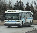 Regina Transit